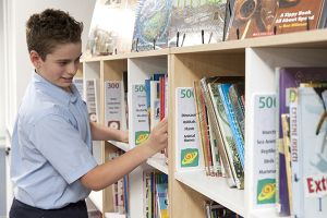 St Pius Catholic Primary School Enmore - student looking through books in library